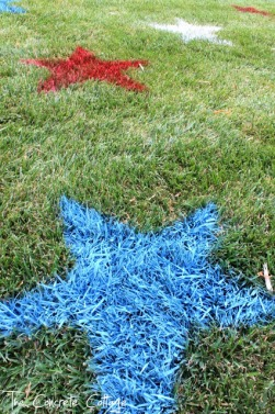 Fourth of July Decor Painted Lawn Stars